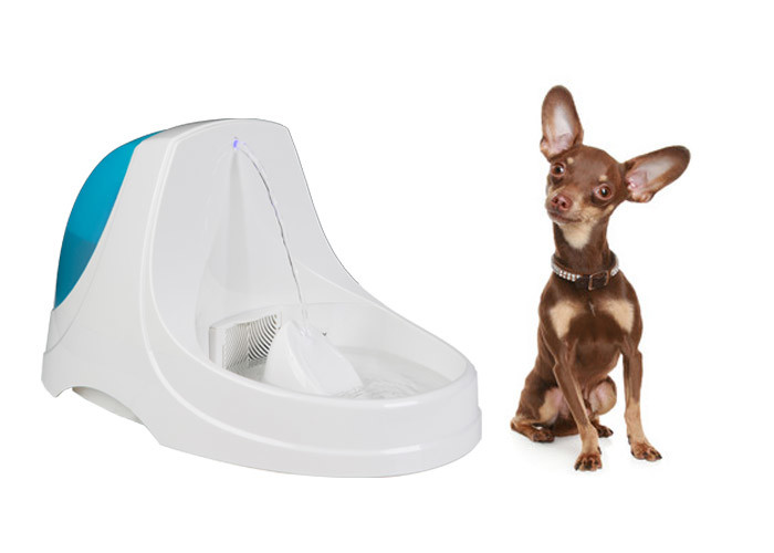 Ultra Quiet Pet Drinking Water Fountain Transparent ABS 38x25x22 CM